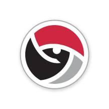 Futuro Sports logo 2017