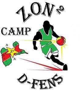Zone 2 D-fense logo 2017